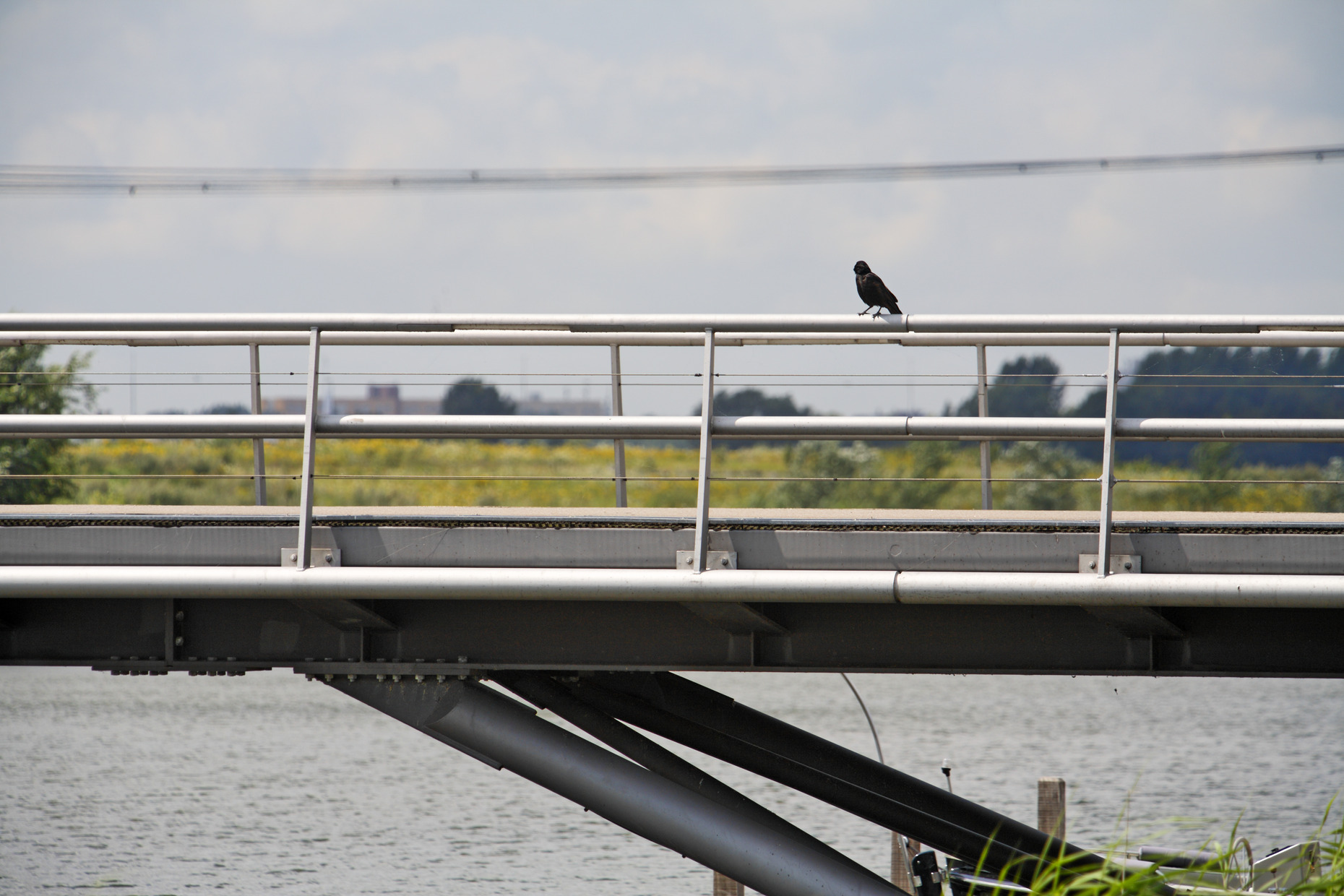 Ijburg Bridges 10